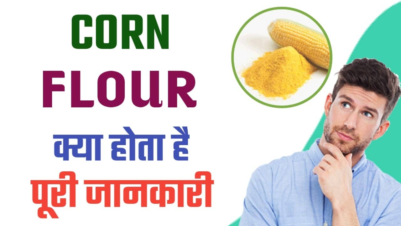 Corn Flour Kya Hota Hai  Courn Flour In Hindi